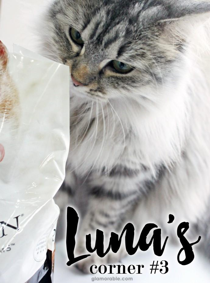 Luna's Corner: Purina Pro Plan Shredded Blend for Cats